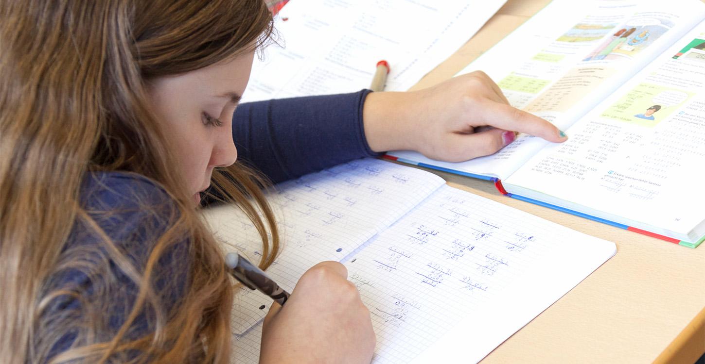 REssourcenorientierte Schulentwicklung